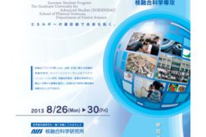 SSP2013posterのサムネイル